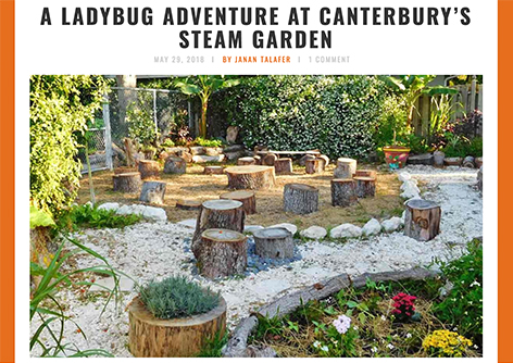 A Ladybug Adventure at Canterbury's STEAM Garden